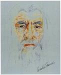Coralie's Gandalf portrait